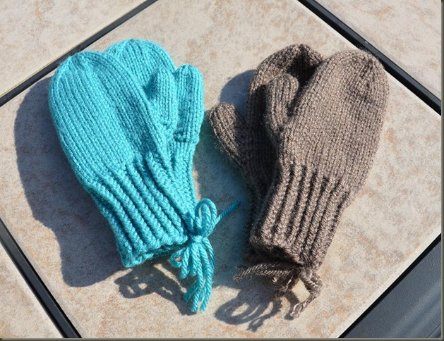 little blue and brown mittens